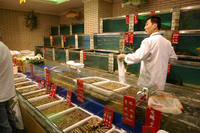 Wuxi seafood restaurant selection, 03-19-07