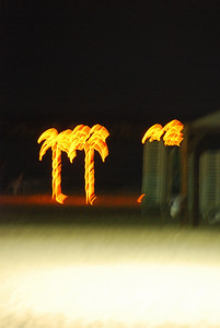 This beach has neon palm trees....