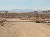 081230_7257 Desert RR Xing