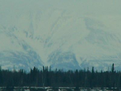 2008 Anchorage/Elmo