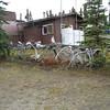 Antler Fence