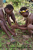 The Hadzabe prepare a fire so they can smoke out the bees and collect the honey