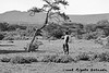 A Hadzabe attempts a kill