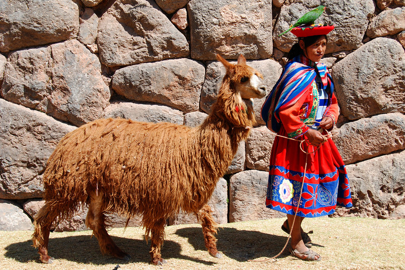 Here's an Indian woman walking her llama and parrot in front of the ruins at Sacsayhuaman, just outside of Cusco (hmm, maybe a bit staged).