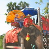 After the Summer Palace we stopped for an elephant ride.