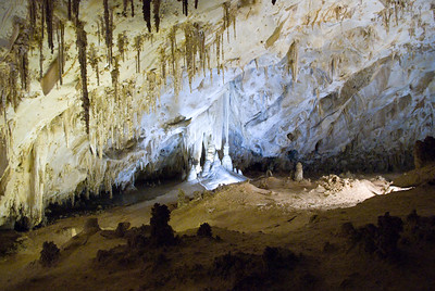 Carlsbad Caverns, NM - On Guided Tour - Witches Broom