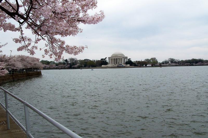 Jefferson Memorial across the Title Basin