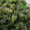 007 - seaweed caviar