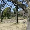14 - park