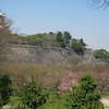 15 - castle wall