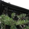 06 - random shrine