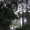 11 - walking to kiyomizudera