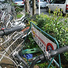 014 - bike locked to a no bike parking sign