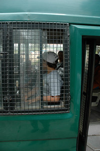 We rode a bus within the Bannerghatta animal park.