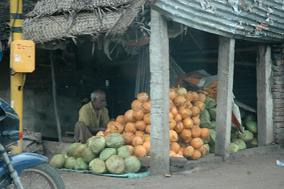 Chennai; two kinds of local coconut.