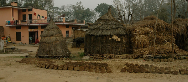 roadside huts, and cowpatties out to dry. Dharamsala to Delhi. Punjab.