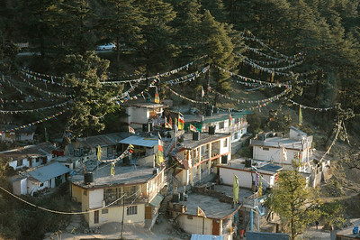 Dharamsala: prayer flags over one region of town.