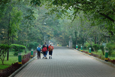 Walking to school across the IISc campus.