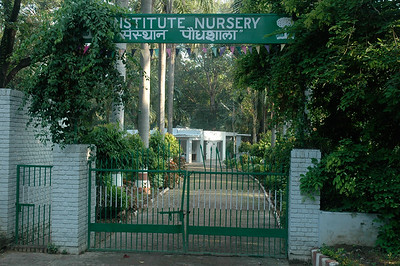 IIT Kanpur - nursery for campus plants.