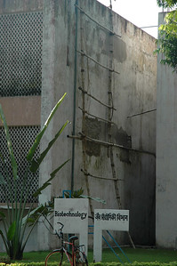 IIT Kharagpur building for Biotechnology; the use of bamboo for scaffolding is an ancient example. ;-)