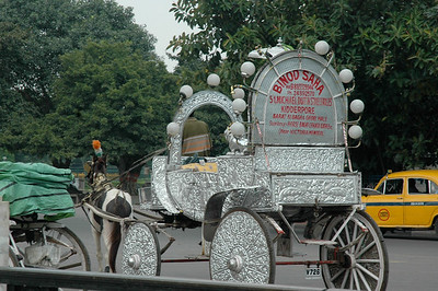 Kolkata; a fancy horse-drawn taxi for the tourists!
