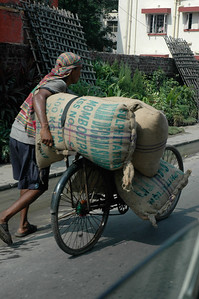 Bicycles are often used for heavy cargo; Kolkata.