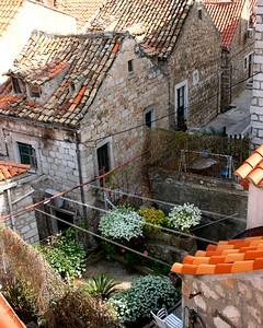 DubrovnikGarden8x10vert.5168