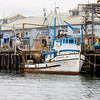 Monterey harbor.