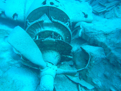 """Sunken DC3 from the movie """"Deep Blue"""" off New Providence, Bahamas"""
