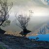 Lake Waikatipu Glenorchy