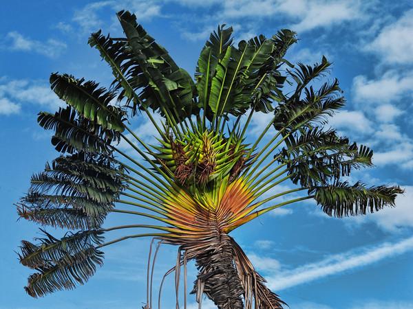 2009-11 Key West