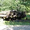 Logs on skid sled