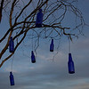 Harald's bottle tree