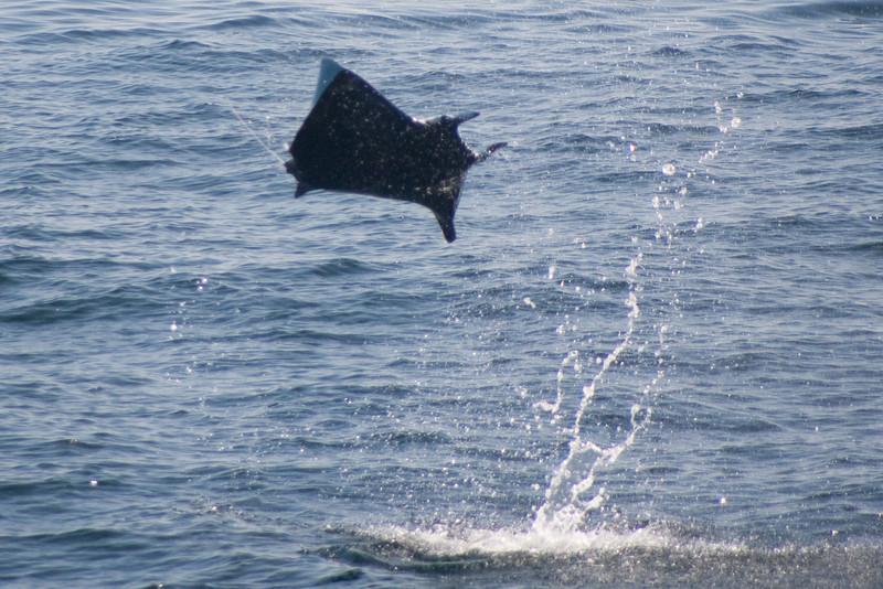 Ray jumping