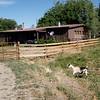 Buckhorn Farm