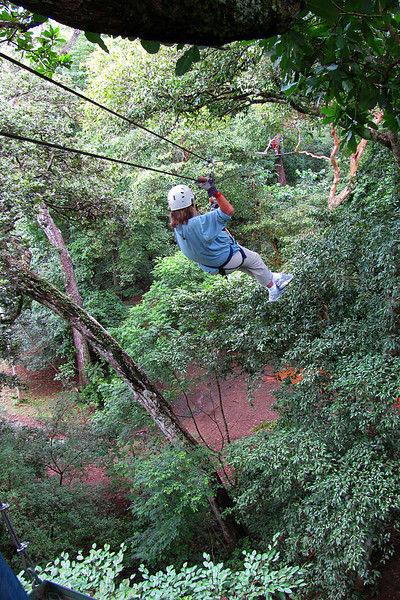 Judith zip-lining through the canopy (if you listen closely, you can hear her scream).