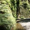 2009 08 13 No Cal Coast 044