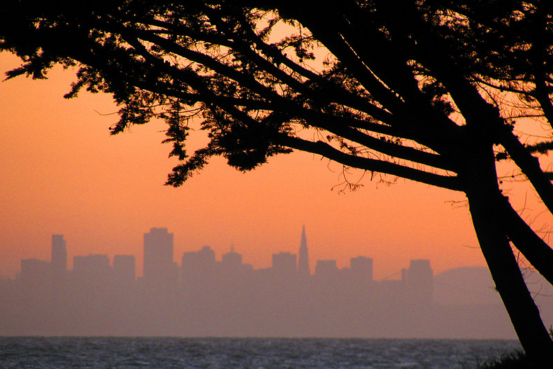 City skyline from Alameda across the bay.