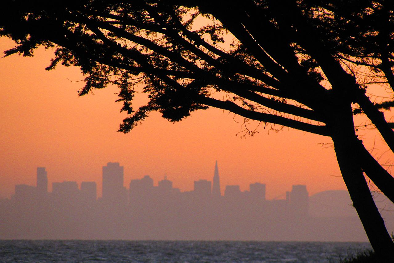 City skyline from Alameda across the bay.