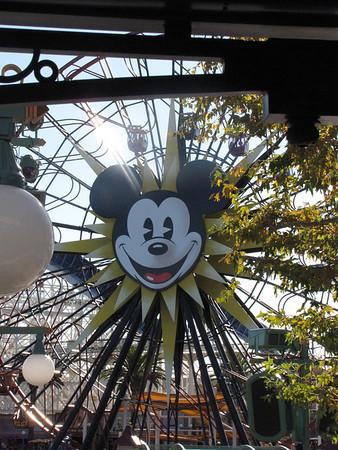 Disney DCA Sunday