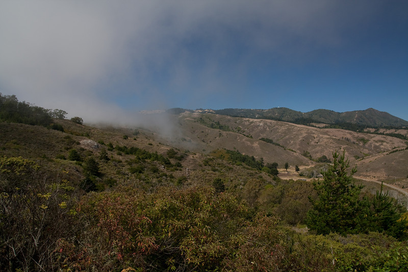 First picture from the trip, on the inline side of the Muir Woods park. The fog rolls over the brim and instantly evaporates.