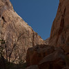 """The walls of the Great Wash Canyon. The trail walks up this canyon until it means the main road about 3 miles in. The canyon is an """"uplift rift"""" so the asolute rim height gets lower and lower as you move up the canyon."""