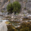 North Fork of the Kings River at the bottom of the canyon, carving through solid granite.