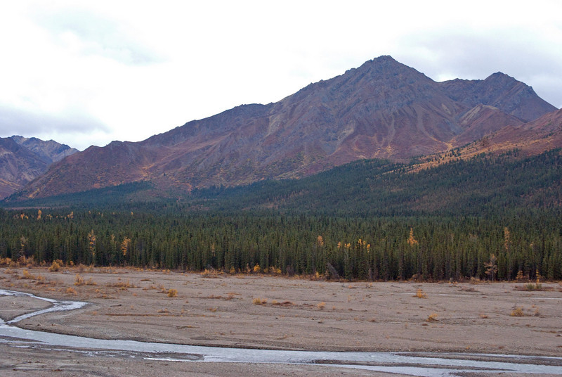 Denali National Park - Pictures do not do this place justice.