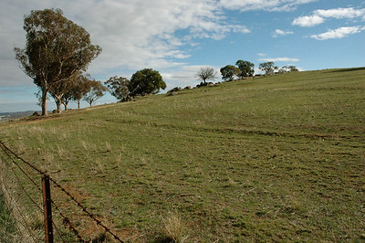 Much of it is rolling hill pastures. New South Wales, Australia