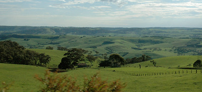 Often, though, it was pasture and hills as far as you could see. South Australia.