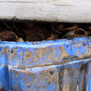 Large containers if discarded/shucked crab shells.