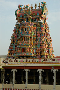 each one is intricately carved, and just reopened after painting. ('Chitirai Thiruvizha' in Madurai.)
