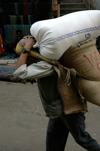 Darjeeling: We see many porters lugging supplies by tump line.