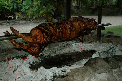 "Thursday is ""pig on a spit"" night. [Malolo lailai, Fiji]"